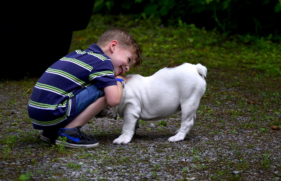 Are Pest Control Treatments safe around children and pets?